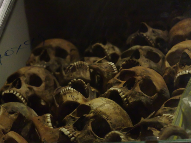Red Terror Museum 15   skulls from a mass grave