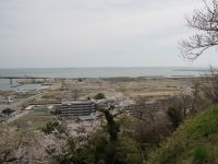Ishinomaki 07 - view from a hill over the washed-away seafront district