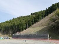 Okawa school 24 - hill behind the school grounds