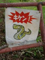 Yoshimi caves 8 - snake warning sign