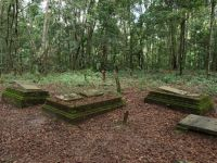 Suriname 17 - old cemetery in the Jodensavanne