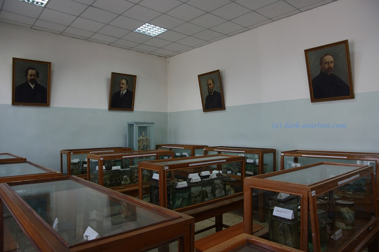 01 03 17   anatomical museum in Semey