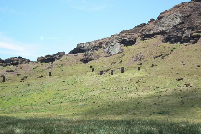 12 01 2018   scattered moai and feral horses, Easter Island