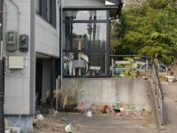 Fukushima 15 - you have to wonder what happened to the cat