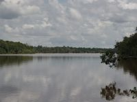Suriname 16 - upper Suriname River