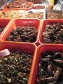 Thailand 7 - street food - insects