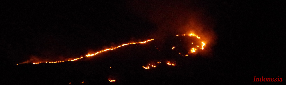 182 - Indonesia wildfire.jpg